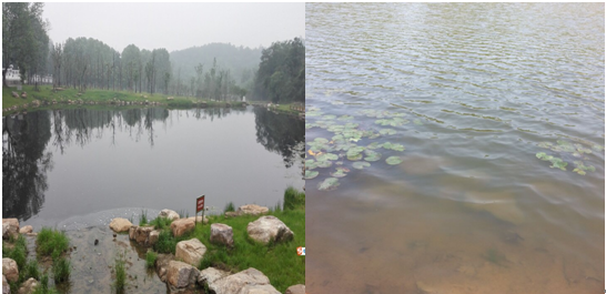 南京牛首山公园水体治理工程