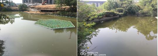 泉州惠安聚龙小镇逸翠湖水体净化工程