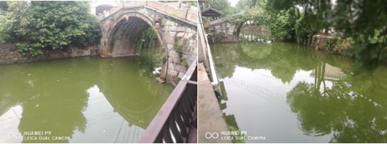 常州龙溪河水体治理工程