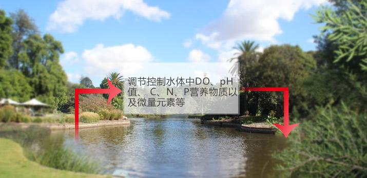 【黑臭水体治理】废水处理运用中聚氯化铝的特点有什么