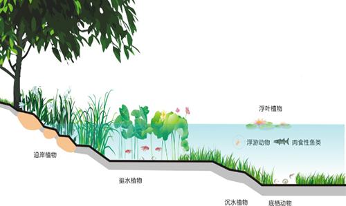 【黑臭水体治理】造纸废水解决详细说明及调节运作关键点